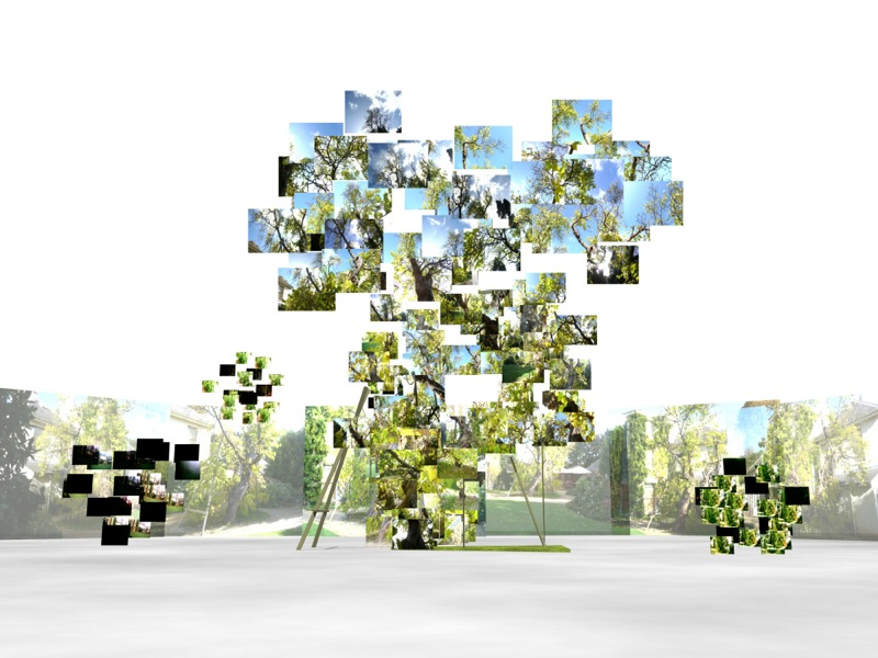 Chris Meigh-Andrews, In Darwin's Garden (2011–12). 3D visualizations. 3D Model: Alan Summers. © Chris Meigh-Andrews, 2011–12. Used with permission.